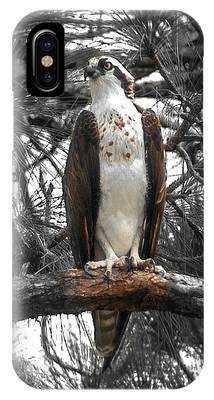 IPhone Case featuring the photograph Overseer by Sally Sperry