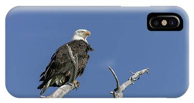IPhone Case featuring the photograph Proud by Ronnie and Frances Howard
