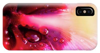 IPhone Case featuring the photograph Rain Flower by Mike Long