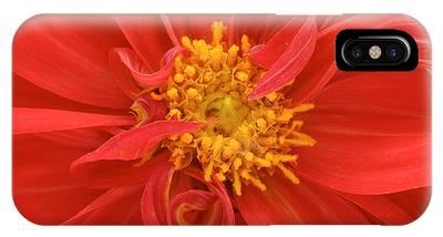 Florist Phone Cases
