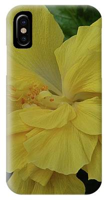 Ruffled Yellow Hibiscus IPhone Case by Patricia Strand
