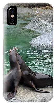 Zoo iPhone Cases