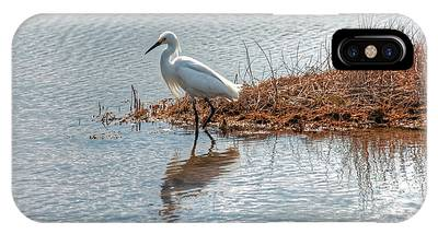 Snowy Egret Hunting A Salt Marsh IPhone Case