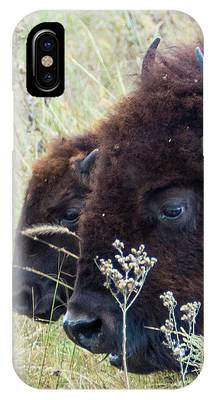 Someone To Watch Over Me IPhone Case by Sally Sperry