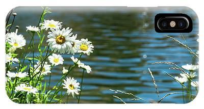 Spring Daisy IPhone Case