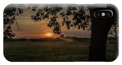 Sunset Under The Tree IPhone Case