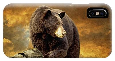 The Bear Went Over The Mountain IPhone Case
