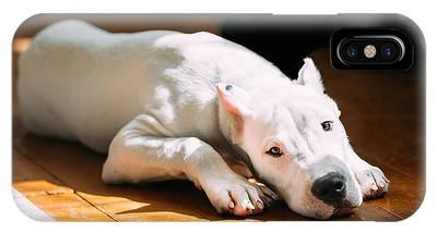 Mastiff Photographs iPhone X Cases