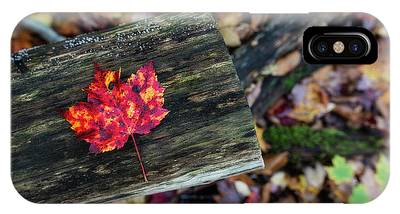IPhone Case featuring the photograph The Reason They Call It Fall by Brad Wenskoski