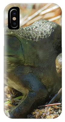 True Frog IPhone Case by Sally Sperry