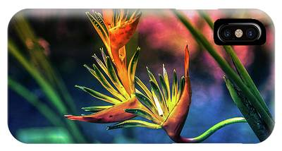 Vibrant Jungle Bird IPhone Case
