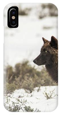 W11 IPhone Case