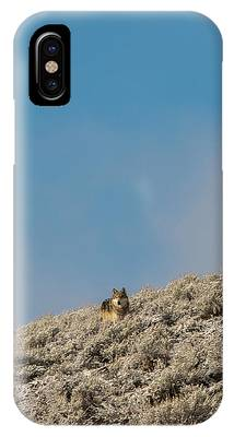 W24 IPhone Case