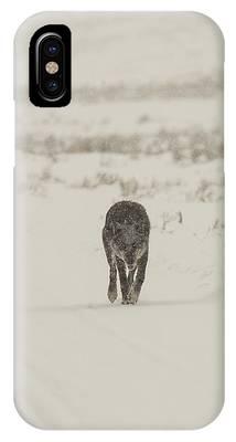 W33 IPhone Case