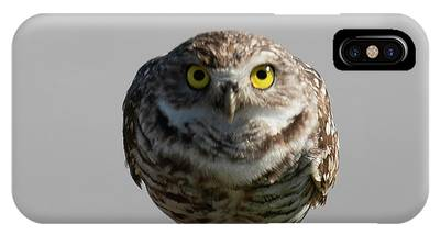 IPhone Case featuring the photograph Whooo Are You by Sally Sperry