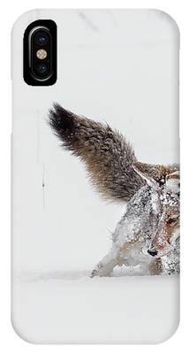Winter Struggle IPhone Case by Ronnie and Frances Howard