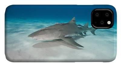 Suckerfish iphone 11 case