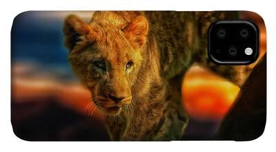 Little Mountain Lion iPhone 11 case