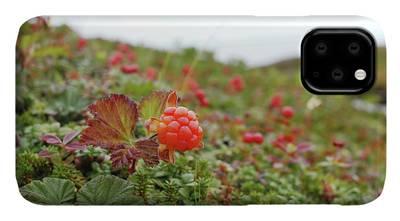 Cloudberries Black iphone 11 case
