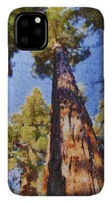 Designs Similar to Giant Sequoia Pastel