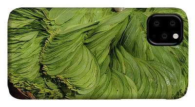 Southern India Photographs iPhone Cases