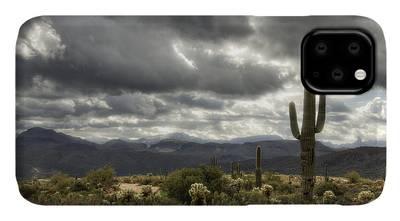 cactus thorns desert sky clouds 2 iphone case