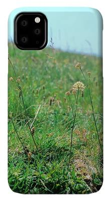 Umbelliferae iPhone Cases