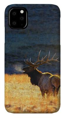 West Photographs iPhone Cases