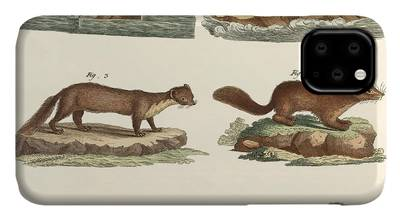 Northern River Otter Drawings iPhone Cases