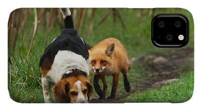 Rare iPhone Cases