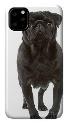 pug dog face 2 iphone case
