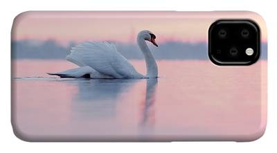 Swan Photographs iPhone Cases
