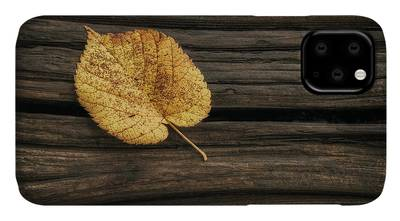 Wood Grain iPhone Cases