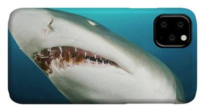 Snaggletooth iphone case