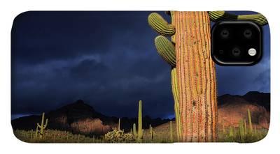 Desert Symphony iPhone 11 case