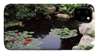 Olbrich Botanical Gardens iPhone Cases