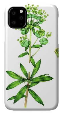Chameleon Capers iPhone 11 case