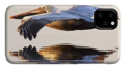 Brown Pelican iPhone Cases