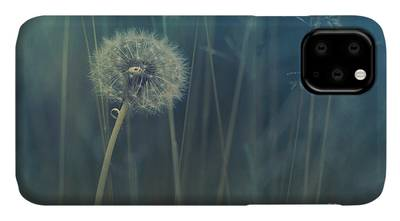 Meadows iPhone Cases