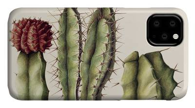 Cactus America iphone case