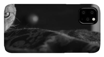 Egyptian Mau iPhone Cases