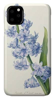 Botany Drawings iPhone Cases