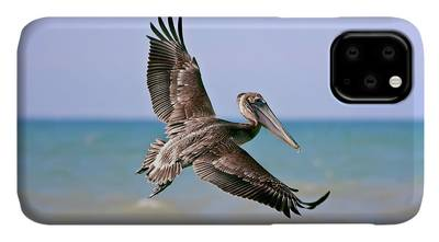Wing Span iPhone Cases