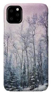 Frost iPhone Cases