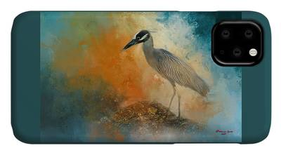 Yellow Crowned Night Heron iPhone Cases
