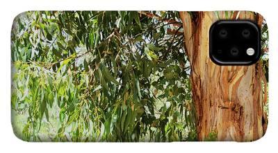 Australian native eucalyptus tree branch iphone 11 case