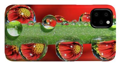 Dewdrop Photographs iPhone Cases