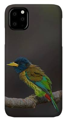 Beautiful Nature iPhone Cases