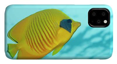 Designs Similar to Masked Butterflyfish
