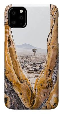 Aloe Dichotoma iPhone Cases